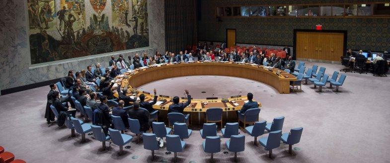 nations unies armes autonomes