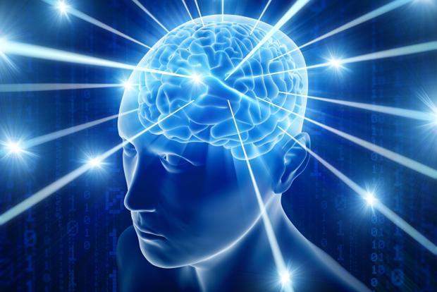 cerveau humain google deepmind