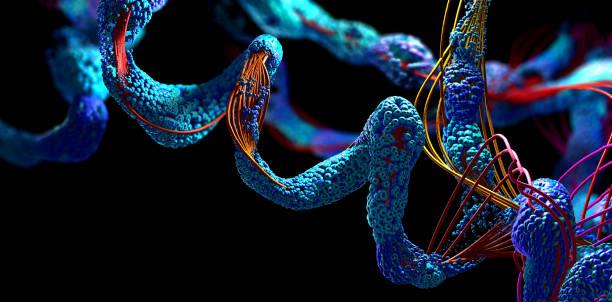 DeepMind publie gratuitement la carte la plus complète des protéines humaines