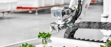 Utiliser des robots à IA pour une agriculture durable