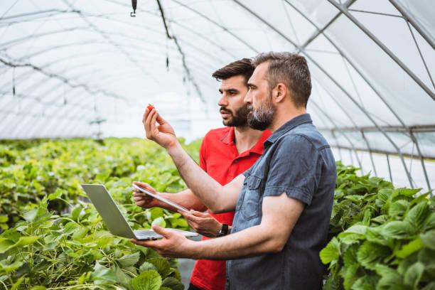 Plant-XR : rendre les cultures plus résilientes grâce à l'IA