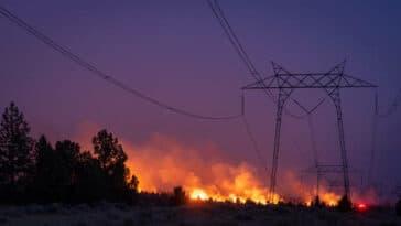 Lutter contre les feux de forêt à l'aide de l'IA